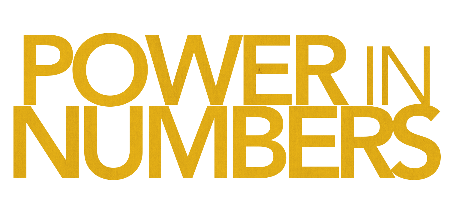 Power in Numbers Logo